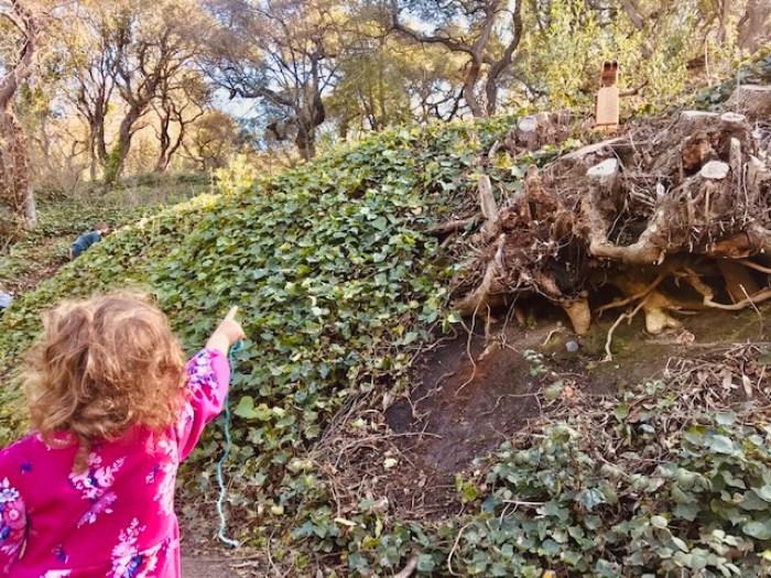 Bridgeview-Trail-Oakland-Trolls