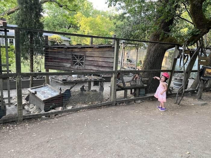 Lafayette Moraga Trail
