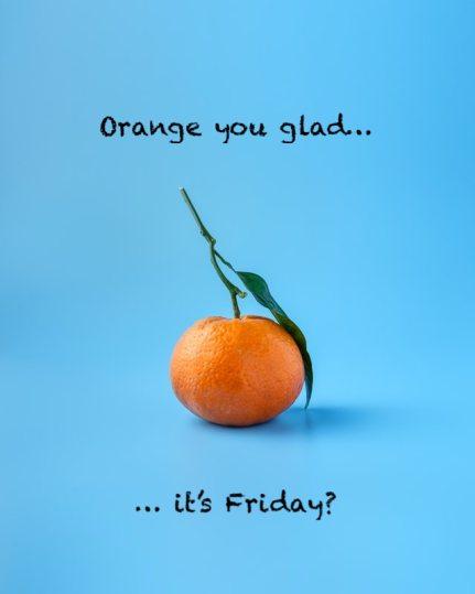 orange you glad pun