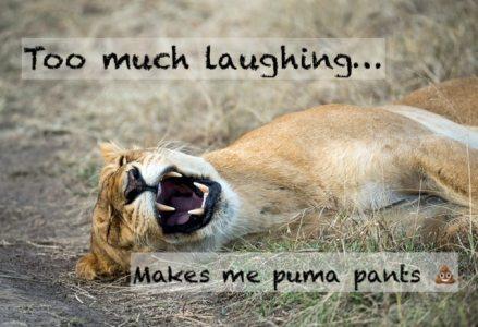 Puma pants friday pun