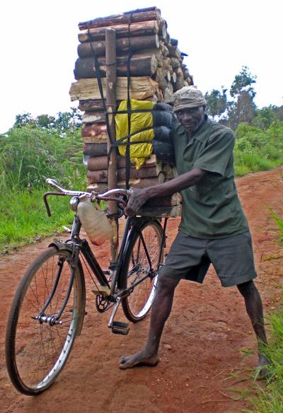 Zomba Woodcutter