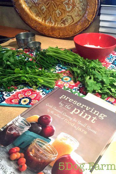parsley,basil, chives and salt for herb salt 5DogFarm