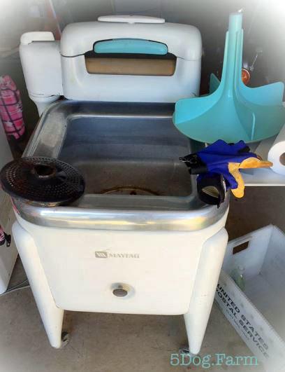 Old Maytag wringer washer