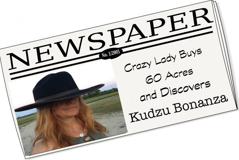 phony newspaper headline about crazy lady
