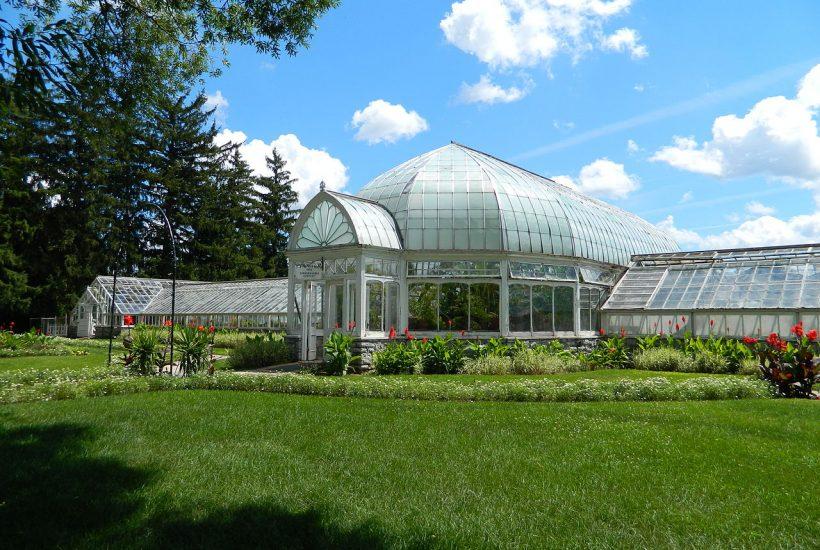 large conservatory 5 dog farm