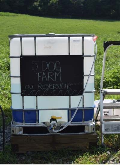 IBC with water 5 dog farm