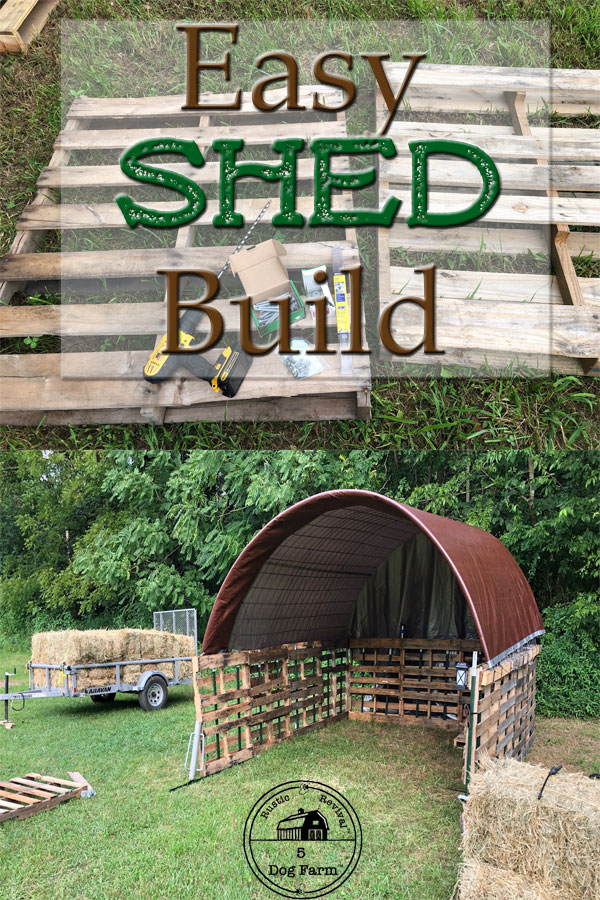 How To Build A Simple Inexpensive Shed 5DogFarm