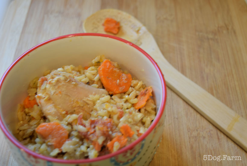 instant pot chicken and rice in a bowl 5DogFarm