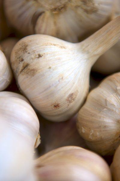 lots pf garlic