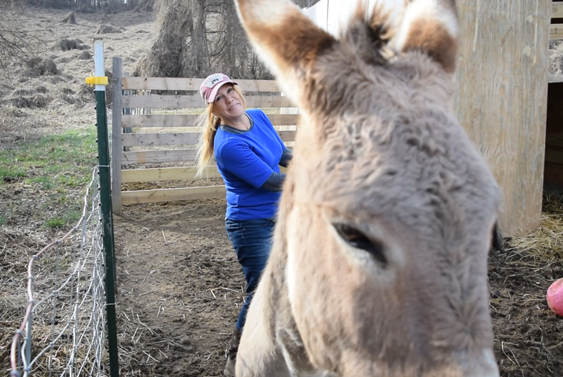 niki dee with bonnie the donkey
