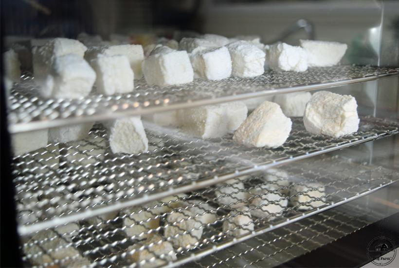 marshmallows in a dehydrator