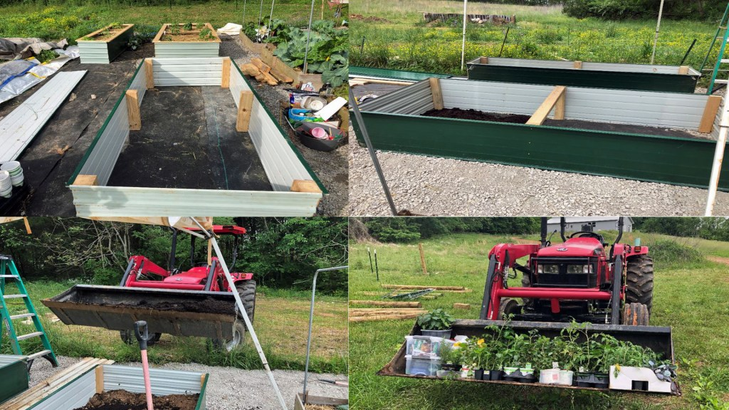 raised beds being filled 5DogFarm
