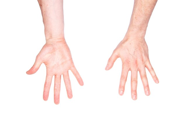 5elect5 Essentials Max Cooper Hands