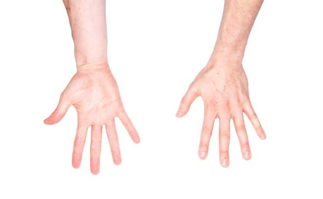 5elect5 Essentials Max Cooper Hands
