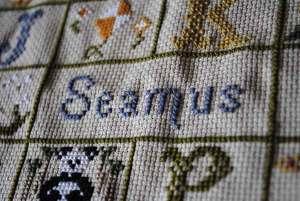 Cross stitch, Seamus
