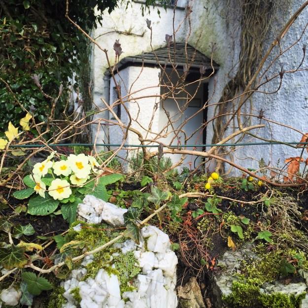 Photo 05-03-2016, 14 51 52
