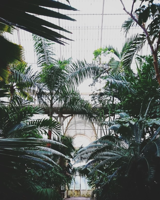 the-palm-house-at-kew-13