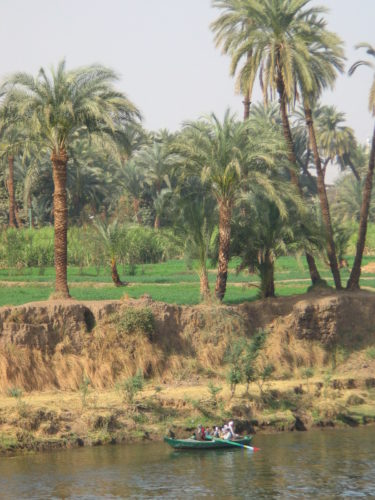 Lush land on the Nile with the desert right behind it