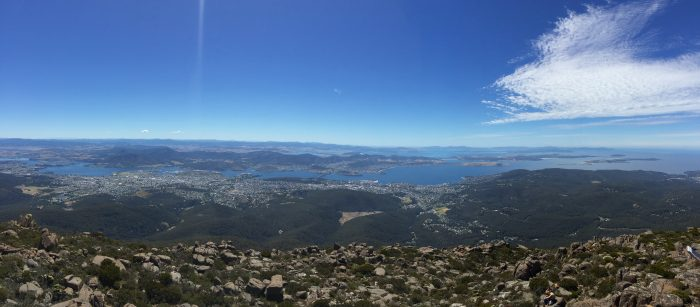 View from top of Mt WEllington