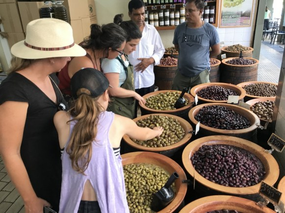 olives in GReece