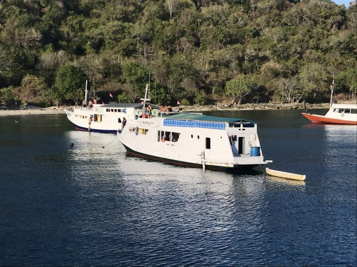 Boat reviews Komodo