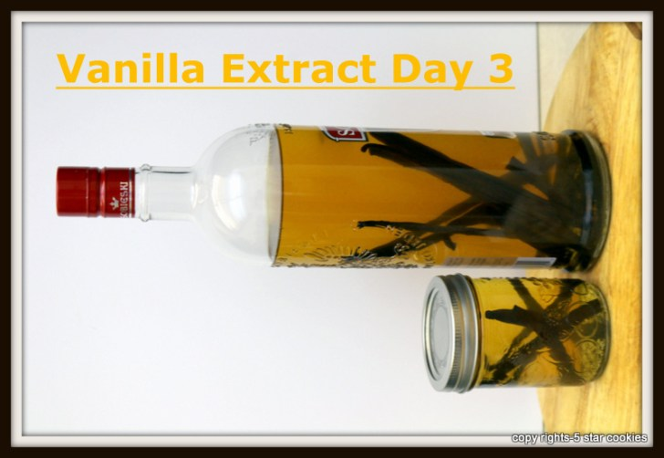 Vanilla extract day 3 from 5starcookies food blog