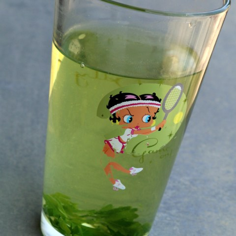 A Magic Brew - My Italian Lover as the Parsley Tea