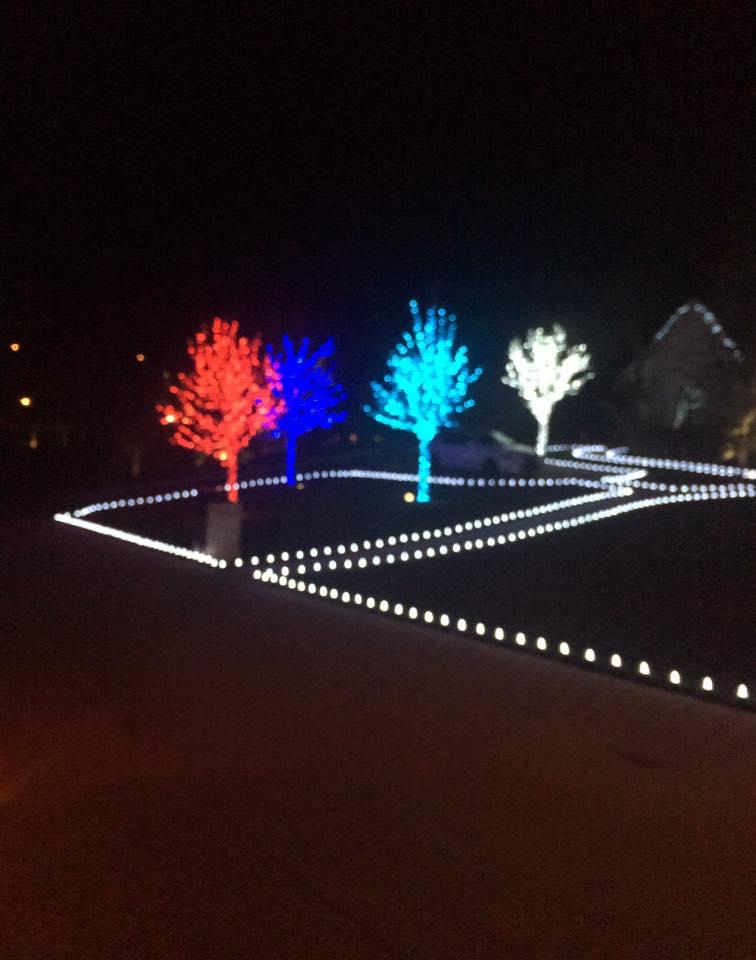 Christmas Lights 15032242 1450318201645312 4035005167702113699 n