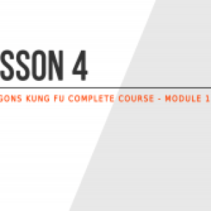 Lesson 4 – Why choose to practice Kung Fu?