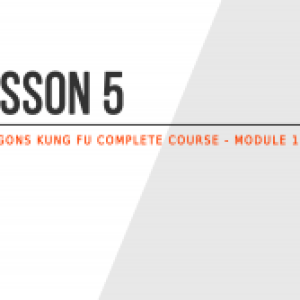 Lesson 5 – How this Kung Fu guide is structured