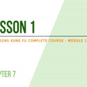 Lesson 1 – The basics of self-defense