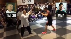 MMA vs Tai Chi 10 seconds knock out: an explanation