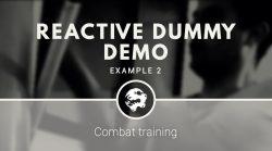 6 Dragons Kung Fu's reactive dummy demo
