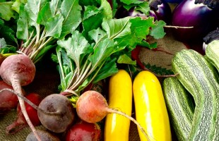 Union Station Farmers Market…A Day of Fun, Food, & Unusual Finds (Dragon Tongue Beans?)