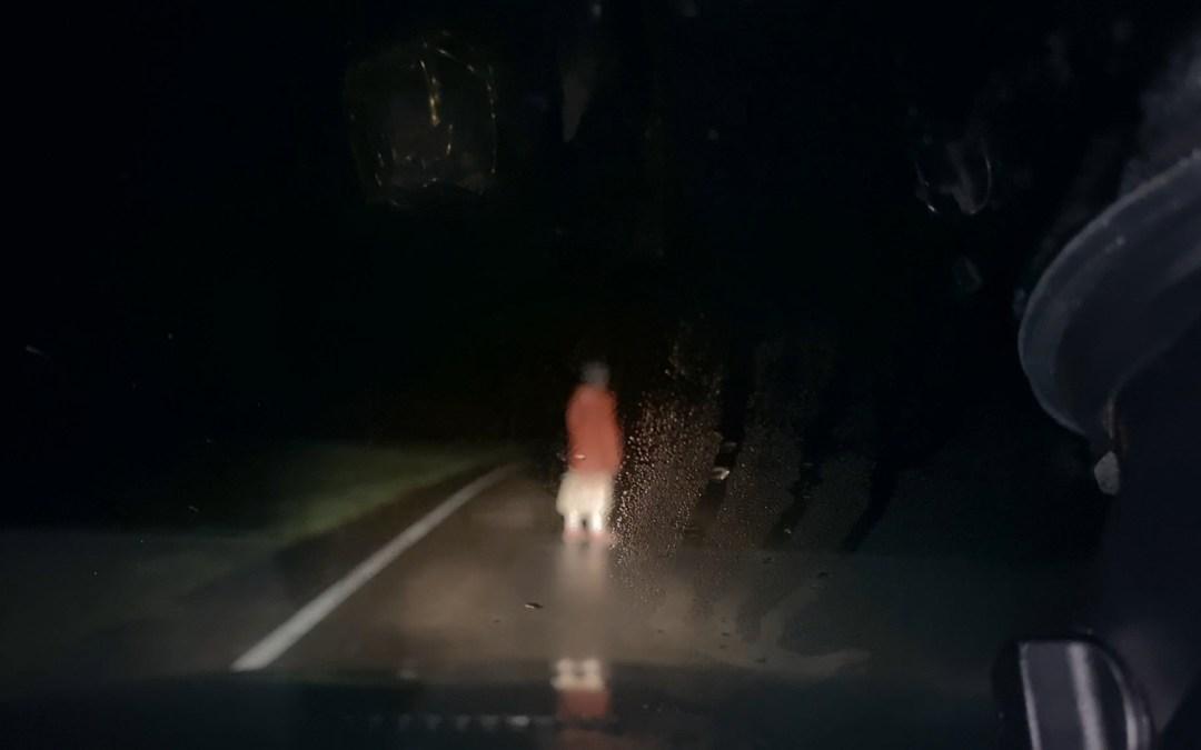 'Dashcam', de Rob Savage, película sorpresa de Sitges 2021