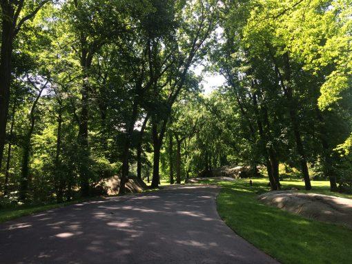 Bronx Botanic Garden.