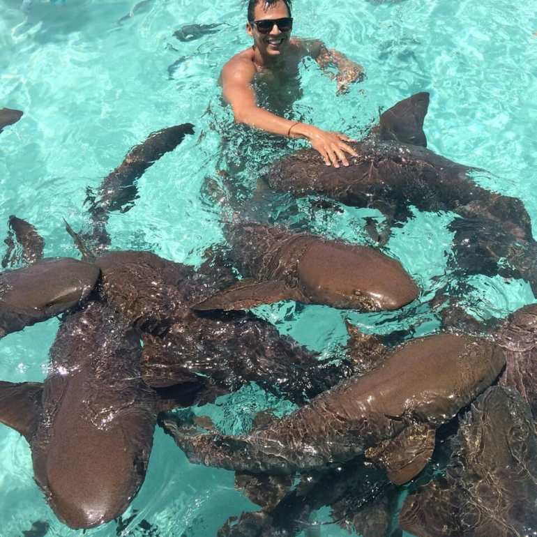 Swimming with sharks in the Bahamas Three days in the Bahamas how to get to Pig Beach travel