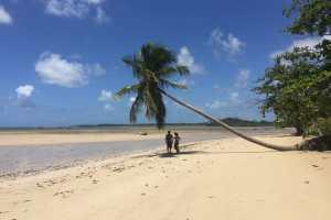 Hotels in Boipeba beaches in bahia