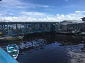 Riverine communities