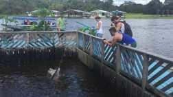Riverine communities Tour in Manaus