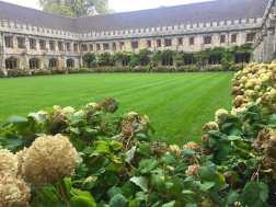 Magdalen College's cloister