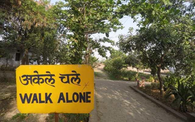 Meu curso de meditação Vipassana: uma jornada de dor e auto-observação