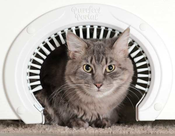 Portal Cat Door for Interior Doors – 7 Gadgets