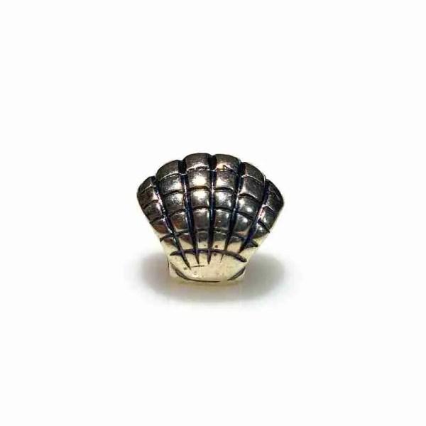 Sea Shell Bead - 7SEASJewelry