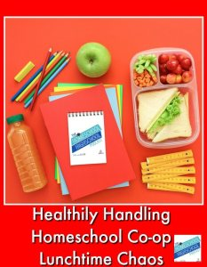 HSHSP Ep 125: Healthily Handling Homeschool Co-op Lunchtime Chaos