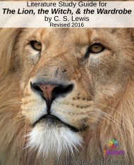 Chronicles of Narnia Literature Study Guide #1: The Lion, the Witch and the Wardrobe for High Schoolers. Theology, philosophy, classics, fun!
