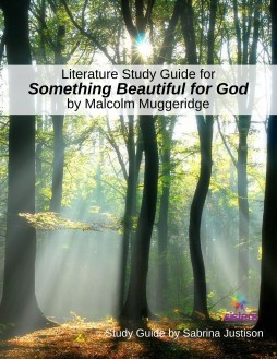 Literature Study Guide for Something Beautiful for God