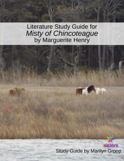 Misty literature study guide