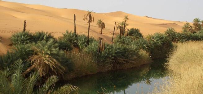 Safari Tours To The Sahara Desert Egypt Safari 7