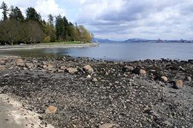 Vancouver_Stanley_Park_2_Robert_Stuczynski_Noise_Blog